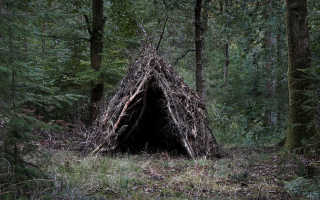 Экстремальное укрытие в лесу